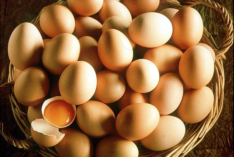 proteine uova
